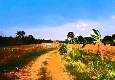Brgy. Conchu, Trece Martirez, Cavite Land